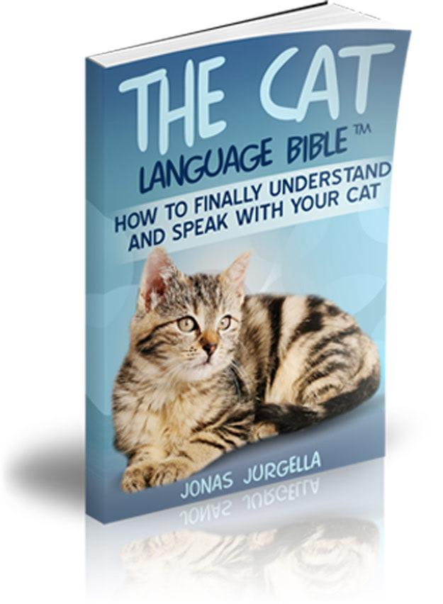 cat language bible